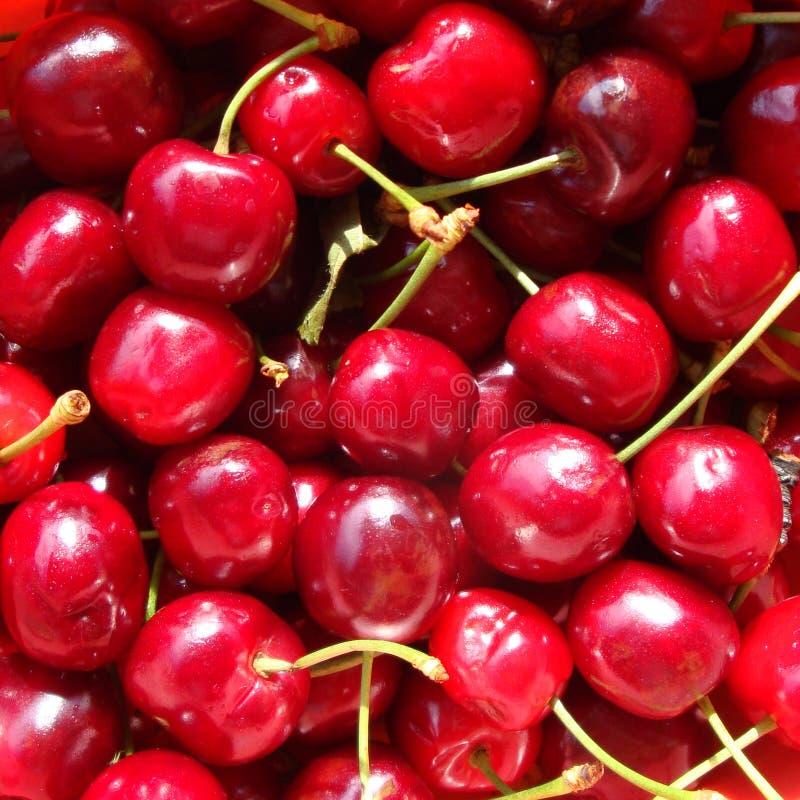 Rêves colorés? images stock