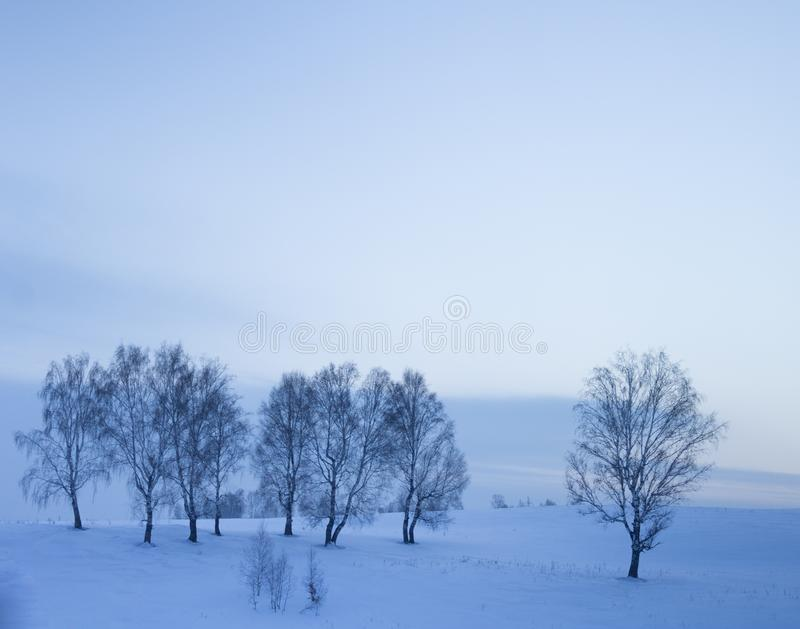 Rêves doux sous la couverture de neige photos stock