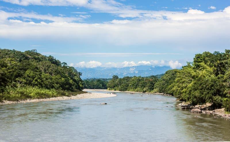 Río amazónico de Napo de la selva tropical ecuador foto de archivo