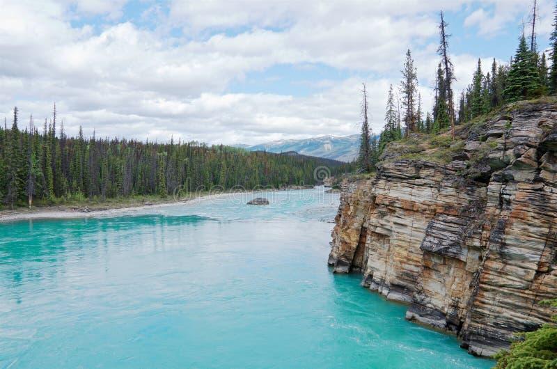 Río Athabasca de Urquoise que fluye abajo de los glaciares en el verano fotografía de archivo