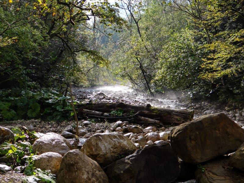 Río Cica de la montaña fotografía de archivo libre de regalías
