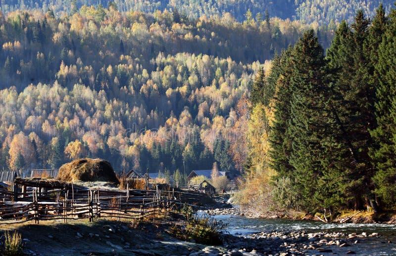 Río con el bosque foto de archivo
