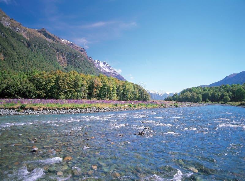 Río con la montaña imágenes de archivo libres de regalías