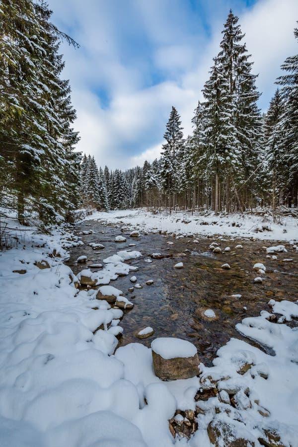 Río congelado en invierno, montañas de Tatra fotografía de archivo