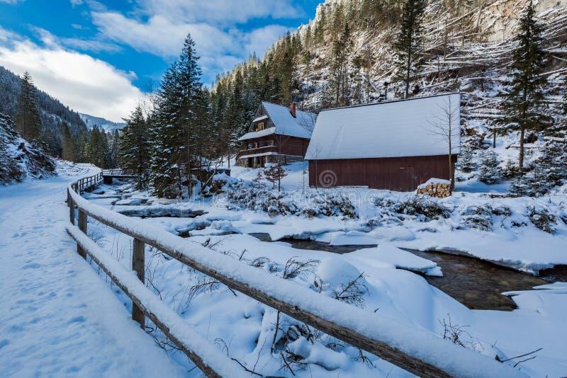 Río congelado y cabaña de madera en invierno, montañas de la montaña de Tatra foto de archivo