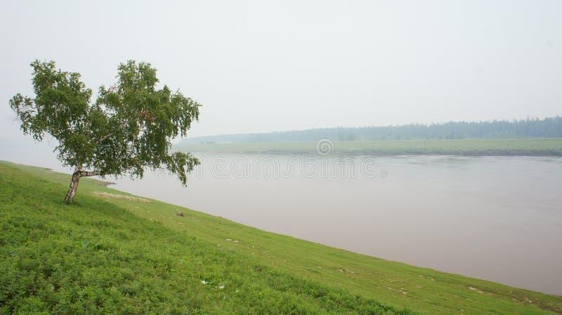 Río de Amga imágenes de archivo libres de regalías