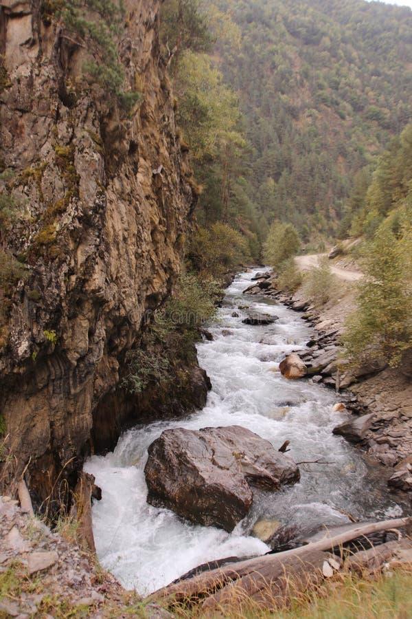 Río de Argun y x28; Caucasus& x29; , Georgia foto de archivo libre de regalías