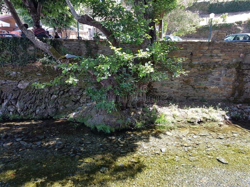 Río de Benfeita foto de archivo libre de regalías