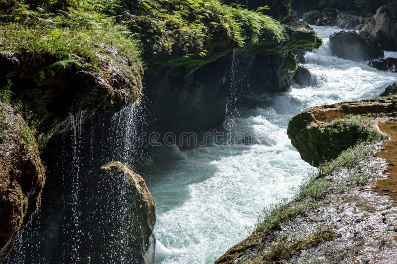 Río de Cahabon que va subterráneo y las pequeñas cascadas que caen apagado los puentes de la piedra caliza en Semuc Champey, Guat foto de archivo libre de regalías