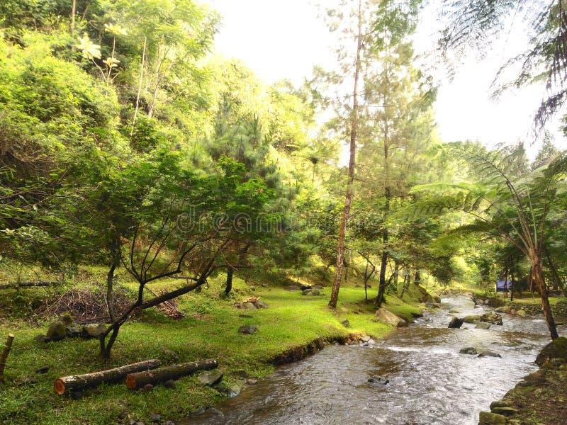 Río de Capolaga foto de archivo libre de regalías