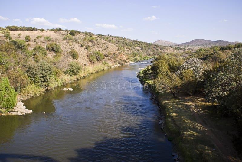 Río de cocodrilo fotos de archivo libres de regalías