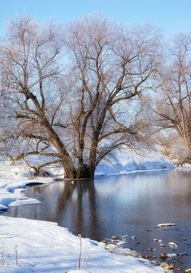 Río de congelación Talitsa en invierno fotografía de archivo