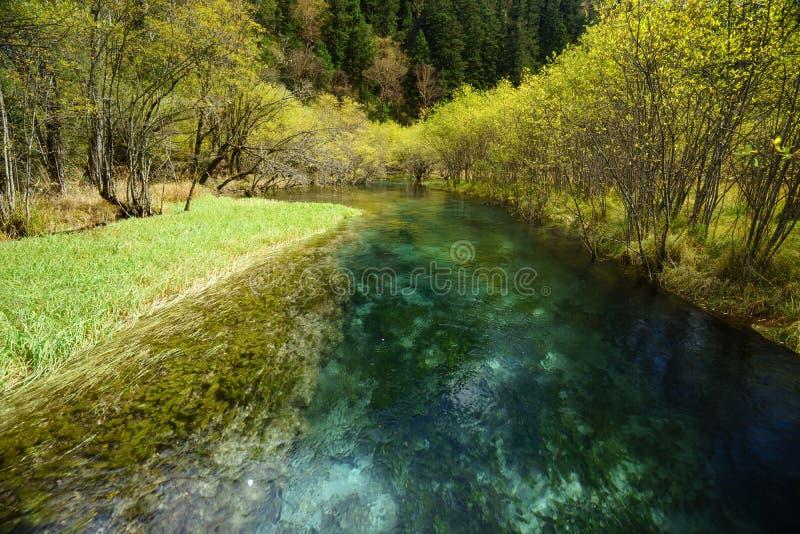 Download Río De Cristal En El Valle Jiuzhaigou Imagen de archivo - Imagen de hermoso, agua: 64203415