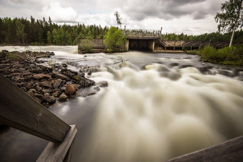 Río de flujo libre en Suecia fotografía de archivo