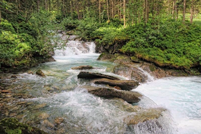 Río de Gerlos que atraviesa el bosque del árbol de pino en las montañas europeas imágenes de archivo libres de regalías