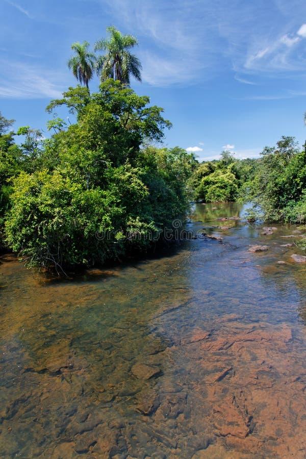 Río de Iguassu fotografía de archivo
