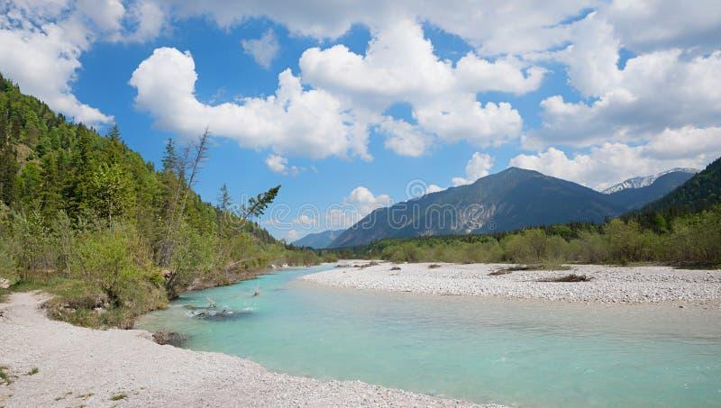 Río de Isar cerca de vorderriss, espacio vital para los pájaros y la Florida alpina fotografía de archivo