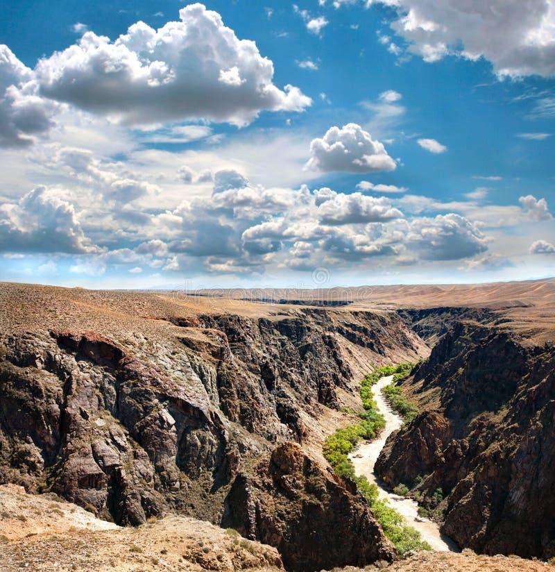 Río de la barranca de Charyn en Kazakhstan fotos de archivo libres de regalías