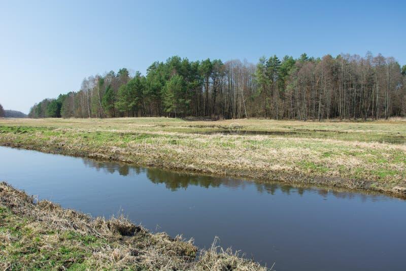 Río de la calma que atraviesa un prado, un bosque y un cielo azul fotos de archivo
