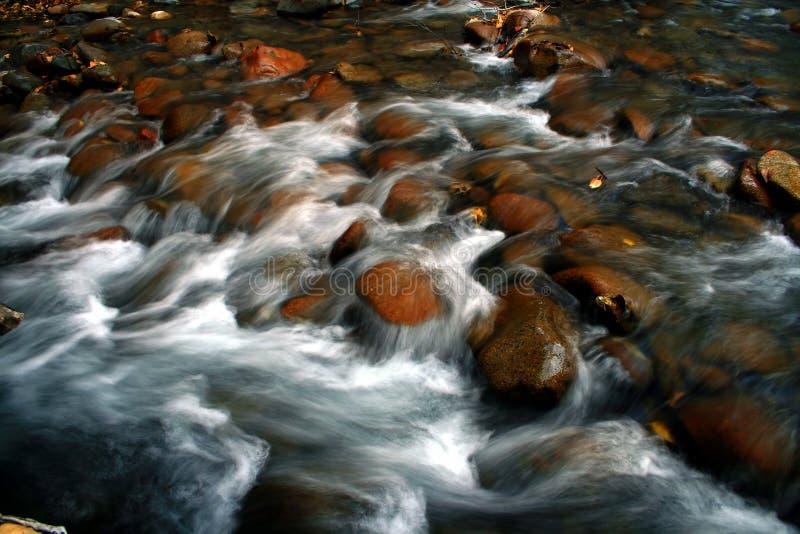 Río de la madera 3 fotos de archivo