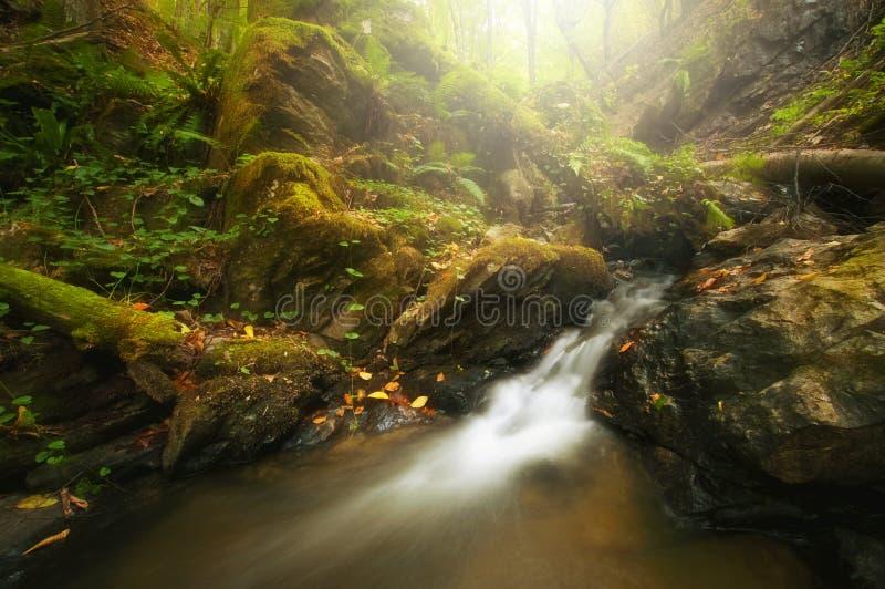 Río de la montaña con aguas y la cascada rápidas fotos de archivo