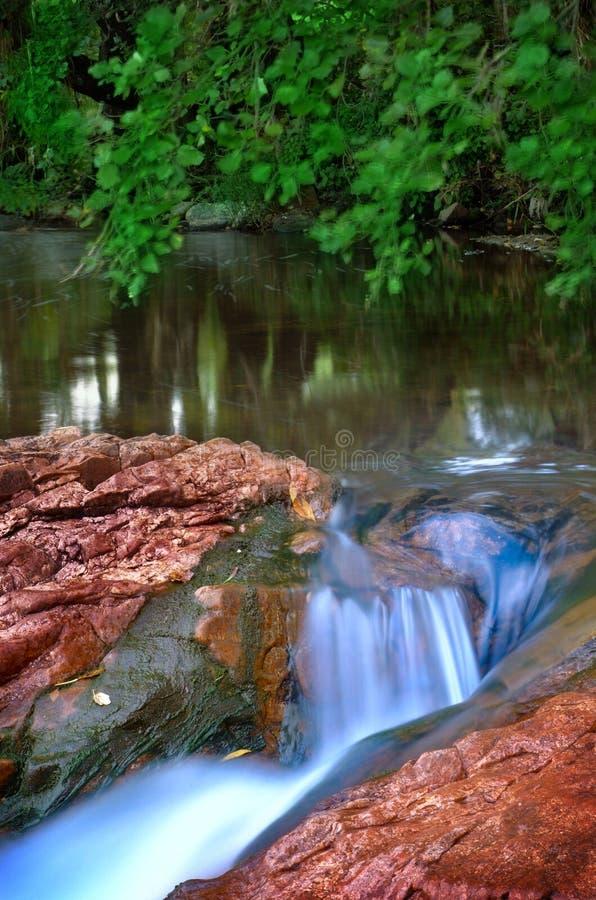 Río de la montaña del arbolado imagenes de archivo