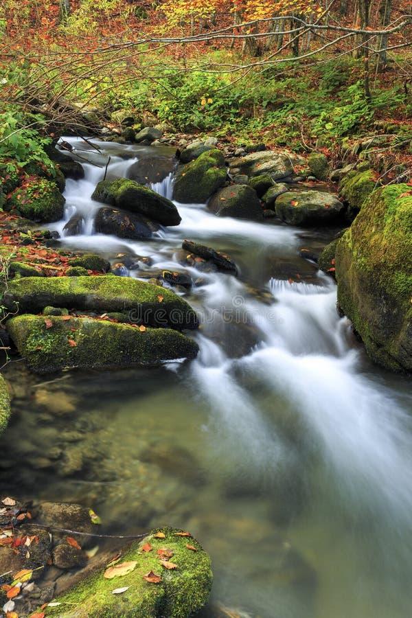 Río de la montaña en último otoño fotos de archivo