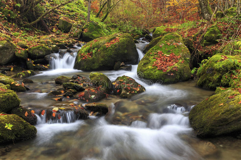 Río de la montaña en último otoño fotografía de archivo