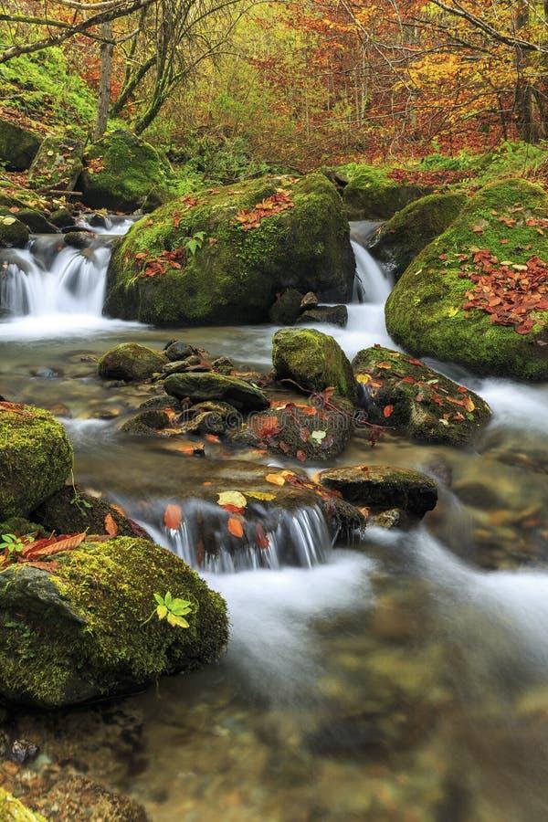 Río de la montaña en último otoño imagen de archivo libre de regalías