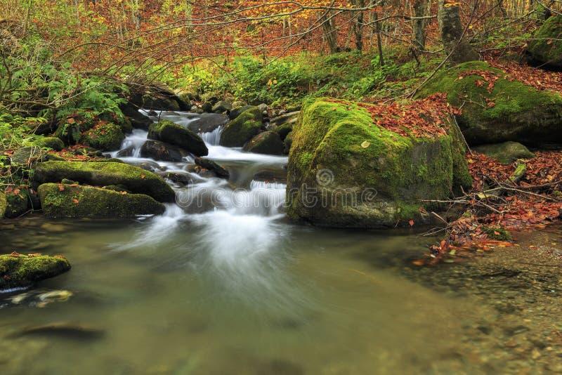 Río de la montaña en último otoño imagenes de archivo