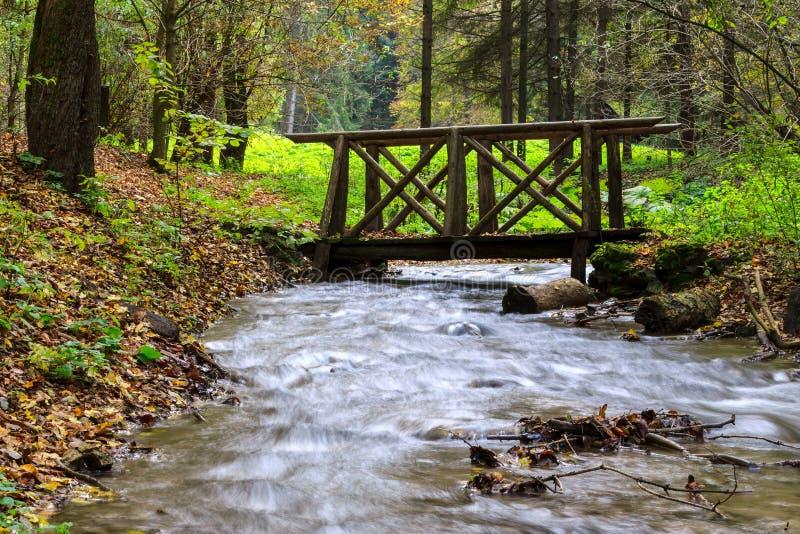 Río de la montaña en el bosque, paisaje del otoño imagenes de archivo