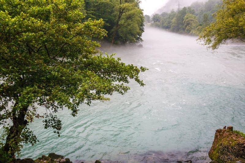Río de la montaña, río de madera fotografía de archivo libre de regalías