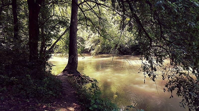 Río de la nuez imagen de archivo