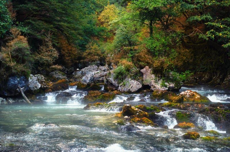 Río de las montañas fotografía de archivo libre de regalías