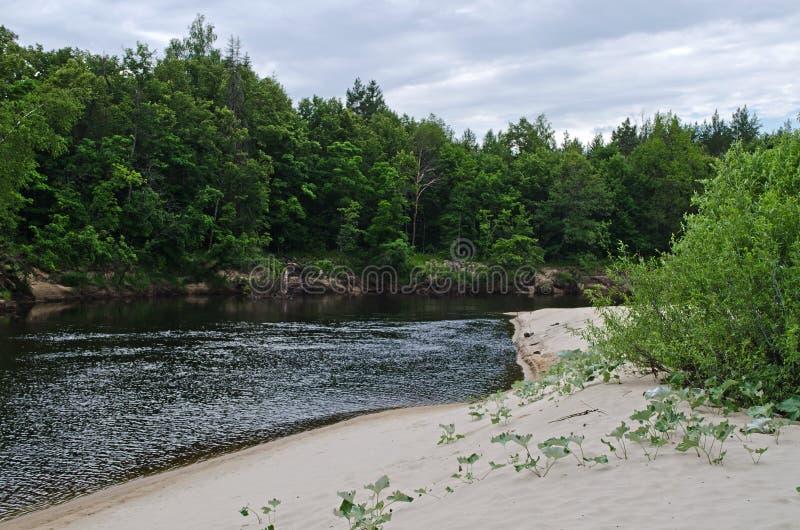 Río de Lukh (Rusia) fotografía de archivo