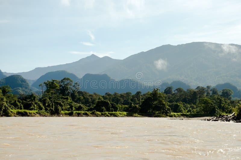 Río de Melinau Paku - parque nacional de Mulu - Borneo fotos de archivo