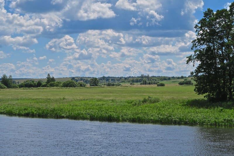 Río de Neman y prados verdes en Bielorrusia fotos de archivo