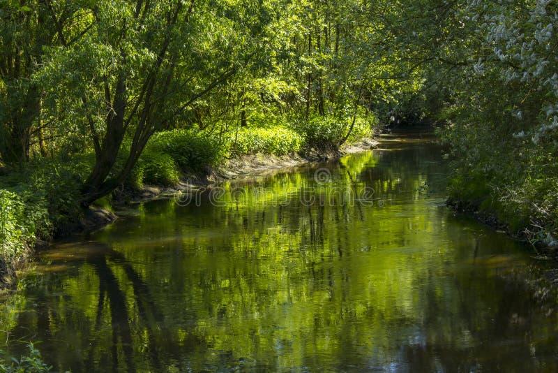 Río de Niers, Geldern, Alemania fotografía de archivo