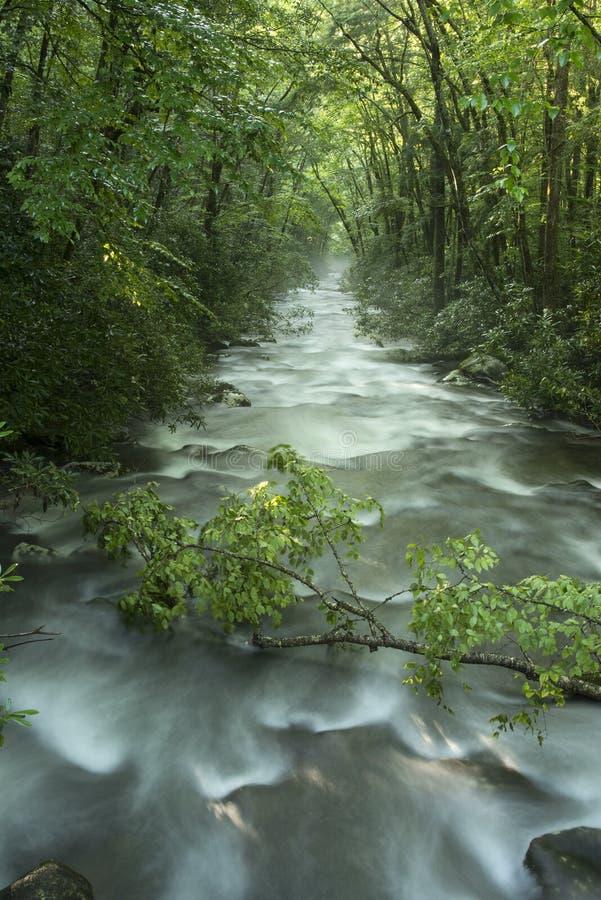 Río de Oconaluftee, montañas ahumadas imágenes de archivo libres de regalías