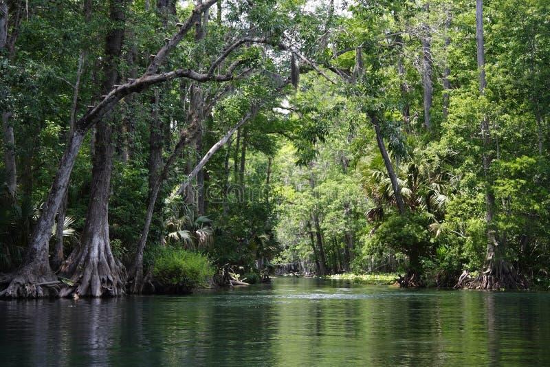 Río de plata fotos de archivo