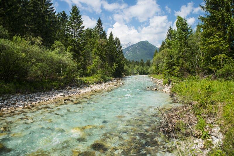 Río de Sava Dolinka, Eslovenia fotos de archivo