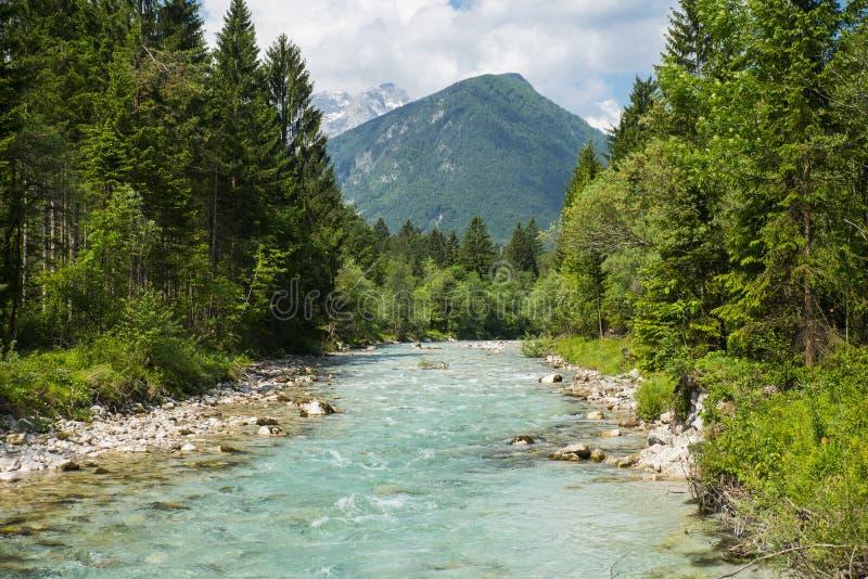 Río de Sava Dolinka, Eslovenia imagen de archivo libre de regalías
