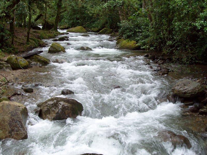 Río de Savegre fotos de archivo