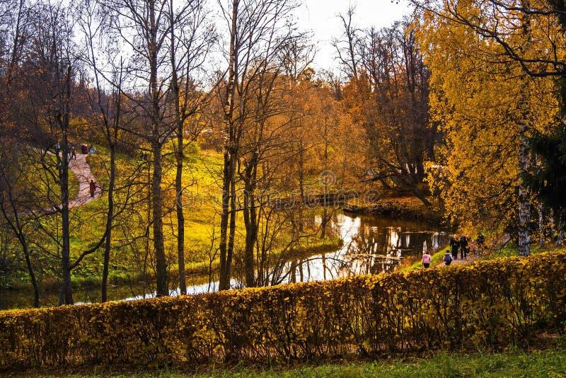 Río de Slavyanka en el parque pintoresco de Pavlovsk imagen de archivo libre de regalías