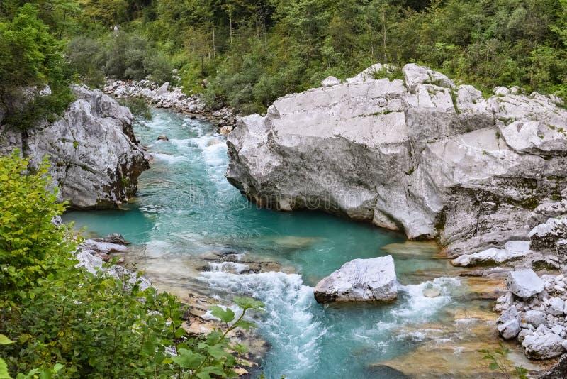 Río de Soca cerca de Kobarid, fluyendo a través del bosque verde enorme en Eslovenia imagen de archivo