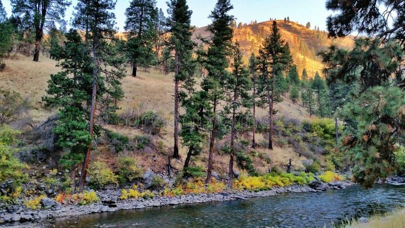 Río de South Fork Payette imágenes de archivo libres de regalías
