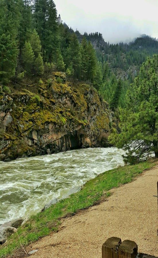 Río de South Fork Payette, Idaho fotos de archivo