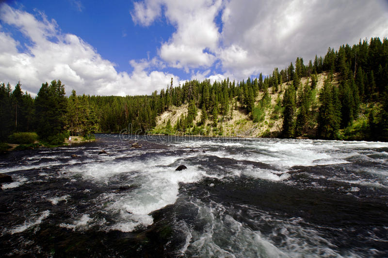 Río de Whitewater que atraviesa una barranca fotos de archivo
