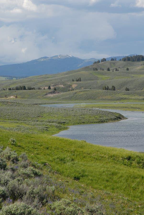 Río de Yellowstone foto de archivo
