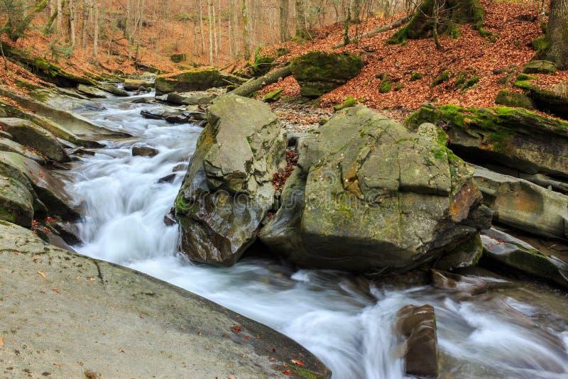 Download Río Del Bosque Con Las Piedras Y El Musgo Foto de archivo - Imagen de río, montaña: 42445930